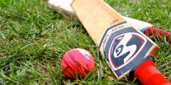 cricket_240x120